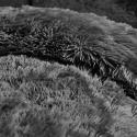 Produktové foto Tmavě šedé mikroplyšové povlečení Catherine Lansfield Cuddly, 135 x 200 cm