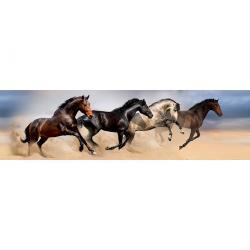 Samolepicí bordura Wild Horses, 500 x 14 cm