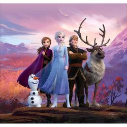 Polštářek Frozen 2, 40 x 40 cm