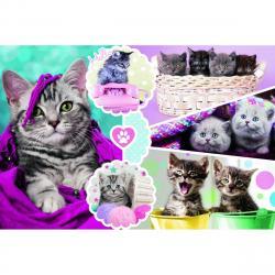 Trefl Puzzle Koťata 160 dílků