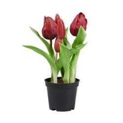 """FLORISTA Tulipány """"Real Touch"""" v květináči - červená"""