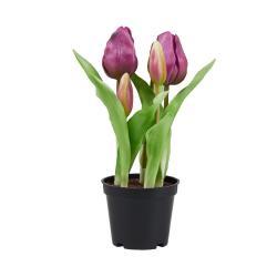 """FLORISTA Tulipány """"Real Touch"""" v květináči - fialová"""