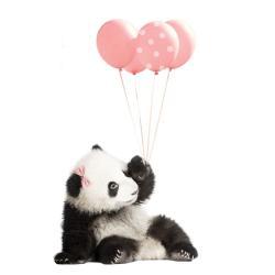 Nástěnná samolepka Dekornik Pink Panda, 70x115cm