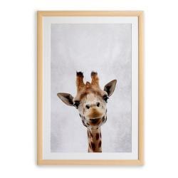 Nástěnný obraz v rámu Surdic Giraffe, 30 x 40 cm