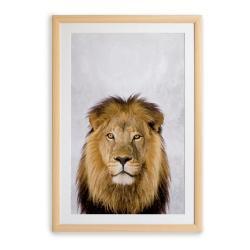 Nástěnný obraz v rámu Surdic Lion, 30 x 40 cm