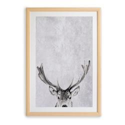 Nástěnný obraz v rámu Surdic Deer, 35 x 45 cm