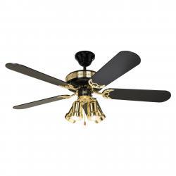 CASAFAN Stropní ventilátor Black Magic se svítidlem
