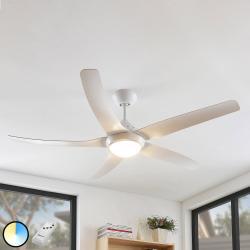 Arcchio Arcchio Dora LED strop. ventilátor 5 lopatky bílá