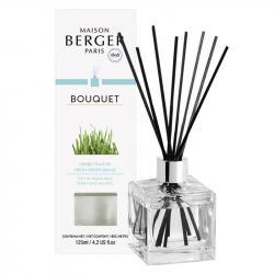 Maison Berger Paris aroma difuzér Cube, Vůně trávy 125 ml