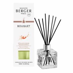 Maison Berger Paris aroma difuzér Cube, Intenzivní třpyt 125 ml