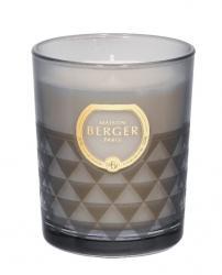 Maison Berger Paris Clarity svíčka Čerstvé dřevo, 180 g
