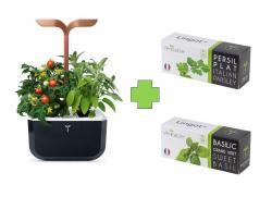 Chytrý květináč Véritable® Exky SMART, měděný + 2 lingoty (petržel, bazalka)