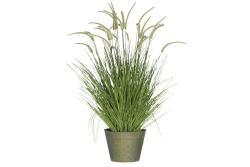 J-Line by Jolipa Okrasná tráva v květináči - Ø60*114cm