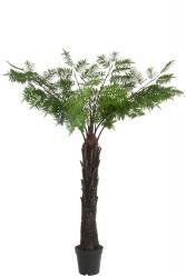 J-Line by Jolipa Okrasná palma v květináči - Ø150*190cm