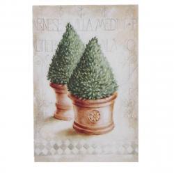 Obraz na plátně Thuja, 35 x 45 x 1 cm