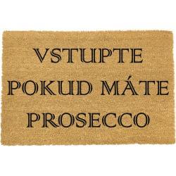 Rohožka z přírodního kokosového vlákna Artsy Doormats Vstupte,40x60cm
