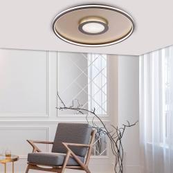 FISCHER & HONSEL LED stropní světlo Bug kulaté, rez 81cm