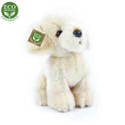 Rappa Plyšový pes Labrador, 18 cm