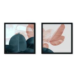 Sada 2 zarámovaných plakátů Insigne Ficus,50x50cm