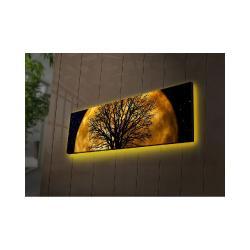 Podsvícený obraz Ledda Night, 90x30cm