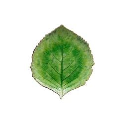 Zelený kameninový talíř Costa Nova Riviera, 19 x 22 cm