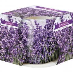 Vonná svíčka ve skle Lavender 100 g, 7,2 cm