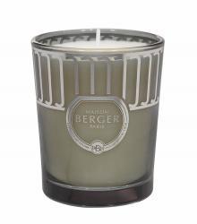 Maison Berger Paris Land svíčka Divoký bodlák, 180 g