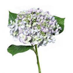 Umělá hortenzie světle fialová, 44 cm