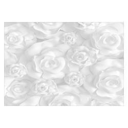 Velkoformátová tapeta Artgeist Plaster Flowers, 400x280cm