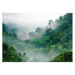 Velkoformátová tapeta Artgeist Morning Fog, 400x280cm