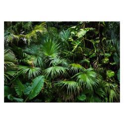 Velkoformátová tapeta Artgeist Sunny Jungle, 400x280cm