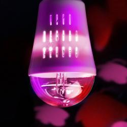 "Wofi E27 4W LED dekorační žárovka Motýli"" 360°"""