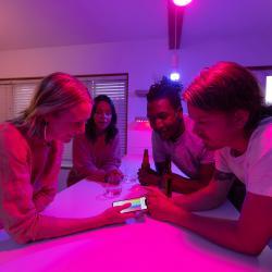 YEELIGHT Yeelight Smart 5 LED set Dim/Color/Filament