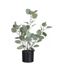 J-Line by Jolipa Dekorace Eucalyptus v květináči - Ø12*43cm