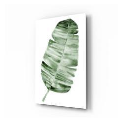 Skleněný obraz Insigne Forest Feather,70x110cm