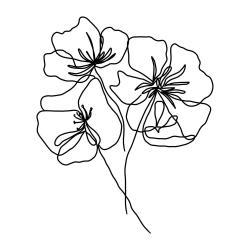 Plakát na kvalitním papíře Veronika Boulová Květy, 29 x 41 cm