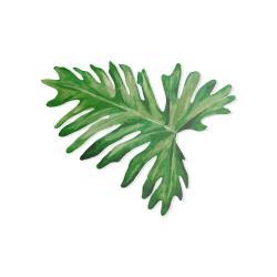 Zelené dekorativní prostírání Madre Selva Tila