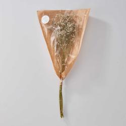 FLOWER MARKET Nevěstin závoj sušený - bílá