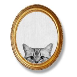 Oválný nástěnný obraz Really Nice Things Cat, 40 x 50 cm