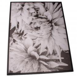 Obraz na plátně v rámu Dahlia, 50 x 70 cm