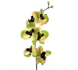 Umělá květina orchidej, zeleno-hnědá