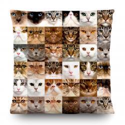AG Art Polštářek Cats, 45 x 45 cm