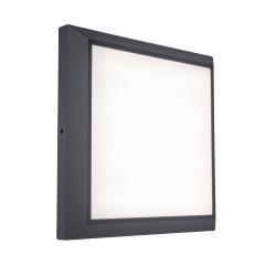 Eco-Light LED stropní světlo Helena, délka 22 cm