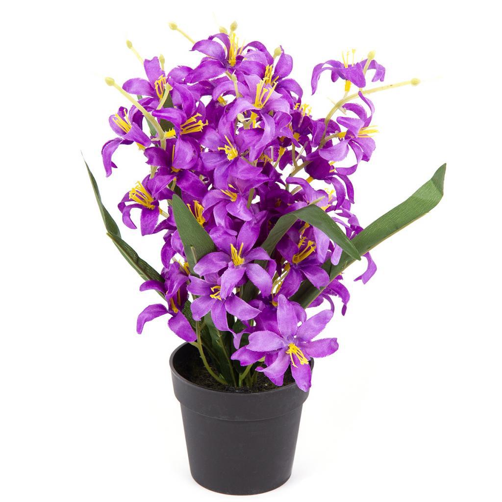 Produktové foto Umělá květina Lilie drobnokvětá v květináči fialová, 30 cm