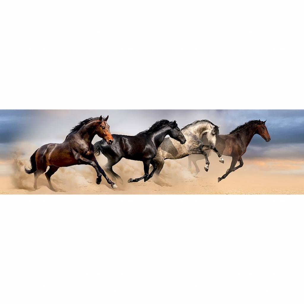 Produktové foto Samolepicí bordura Wild Horses, 500 x 14 cm