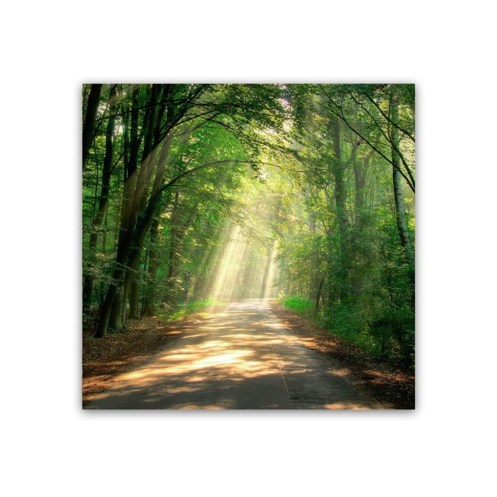 Produktové foto Obraz Styler Glas Nature Road, 30 x 30 cm