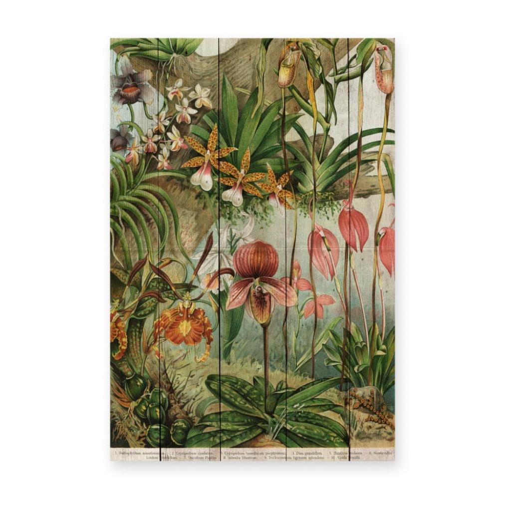 Produktové foto Nástěnná dekorace z borovicového dřeva Madre Selva Jungle Flowers, 60 x 40 cm