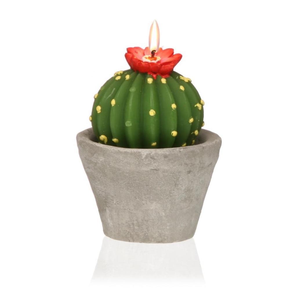 Produktové foto Dekorativní svíčka ve tvaru kaktusu Versa Cactus Emia