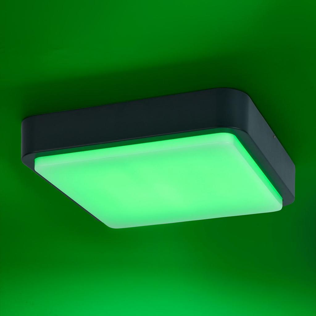 Produktové foto Q-SMART-HOME Paul Neuhaus Q-LENNY venkovní světlo, antracit