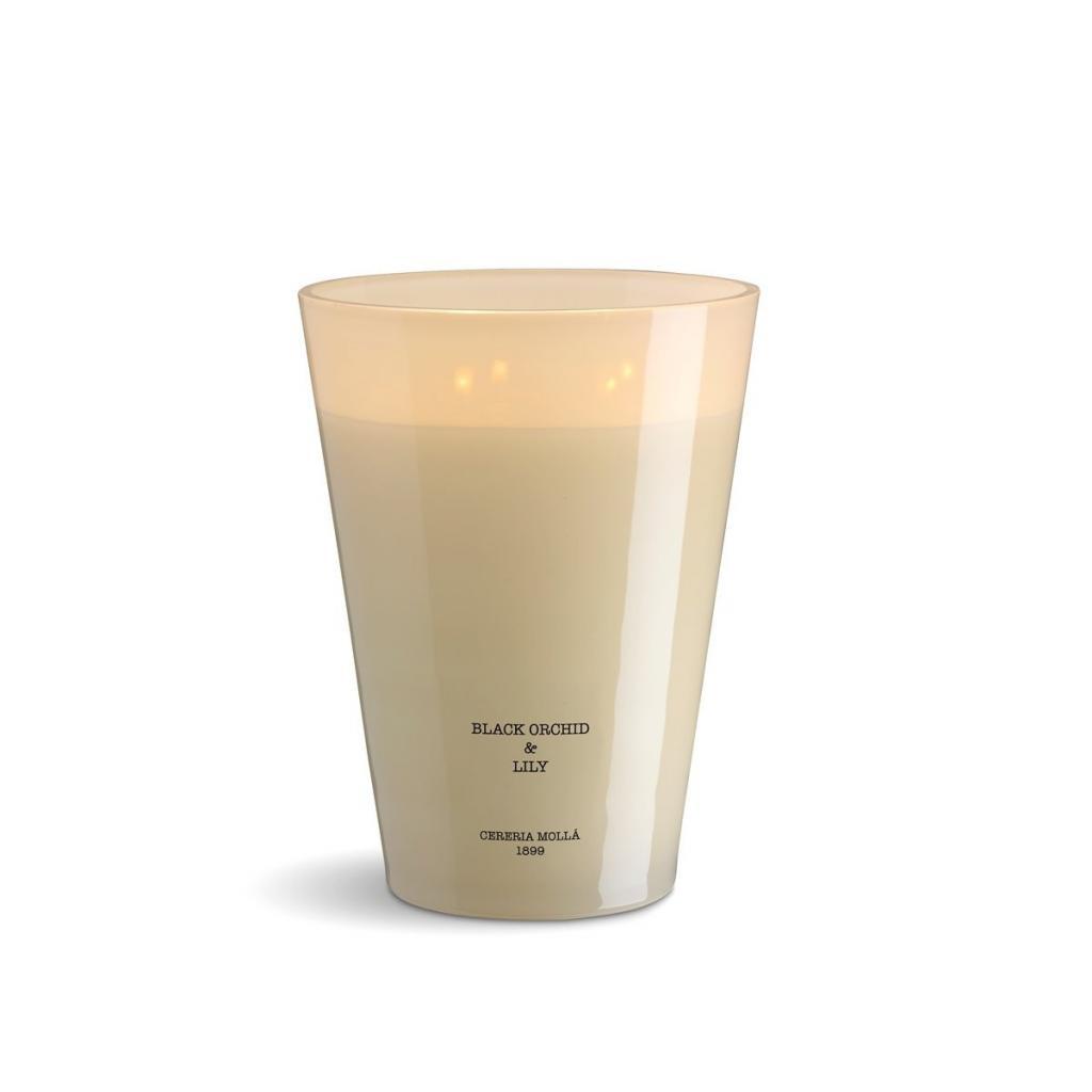 Produktové foto Vonná svíčka se 4 knoty Cereria Mollá Provence Lavender, 3500 g